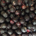 Blackcurrant Whole